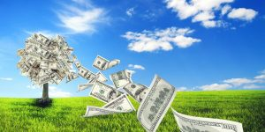Czy rolnik może otrzymać pożyczkę?